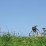 電動自転車ってどう売るの?買取価格をアップさせる方法と相場の調べ方