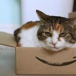 Amazonプライムデーで何買うか迷ってる人へのウリドキ的助言