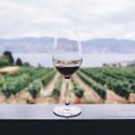 「ロマネサンヴィヴァン」のワインを売るなら!おすすめ買取店3選