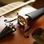 専門店選びが最重要!弦楽器買取の注意点と高額実績を公開!
