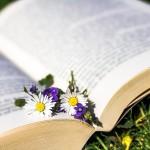 哲学書の買取におすすめな専門店や高価査定のコツをご紹介