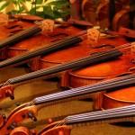 本物のヴァイオリンを見抜く目。日本弦楽器の魅力を分析