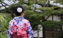 Utsunomiya kimono kaitori thumbnail 250x150
